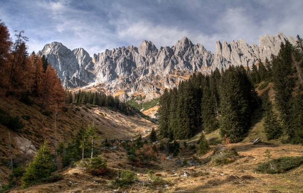 Picture forest, landscape, mountains, nature, rock, Alps, Austrian