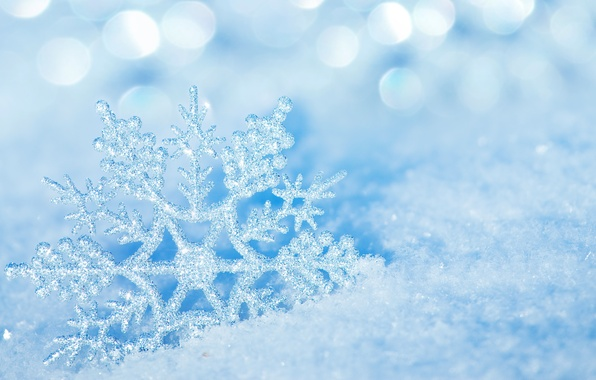 Picture ice, winter, macro, snow, nature, ice, snowflake, bokeh