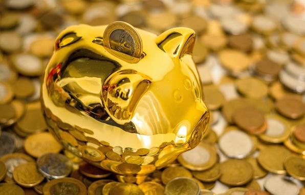 Picture piggy, coins, pig, piggy Bank