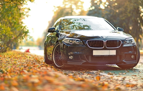 Picture autumn, leaves, tuning, BMW, BMW, F10, 550, Drive