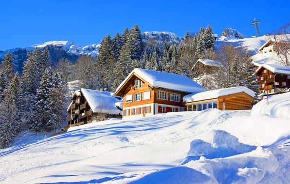 Picture winter, snow, trees, mountains, nature, home, slope