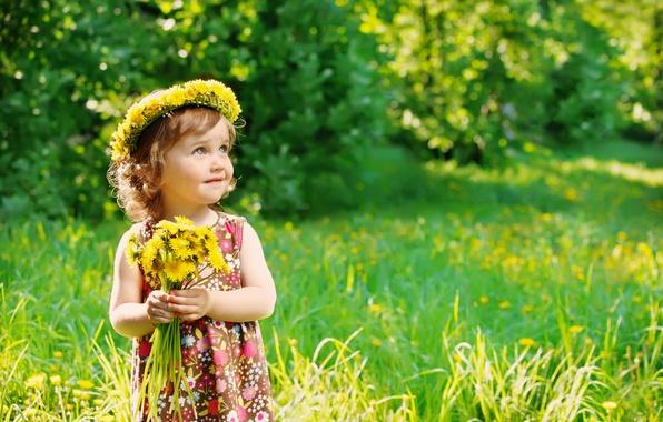 Picture summer, grass, child, summer, dandelions, flowers, dandelions, child, little girl, little girl