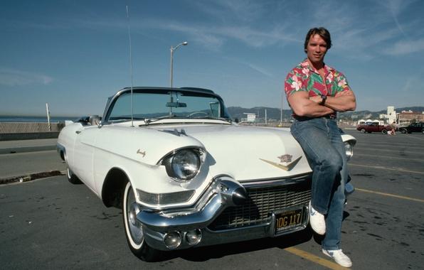 Picture machine, man, Actor, Arnold Schwarzenegger, Producer, Director, Arnold Schwarzenegger, Vintage Cadillac Convert