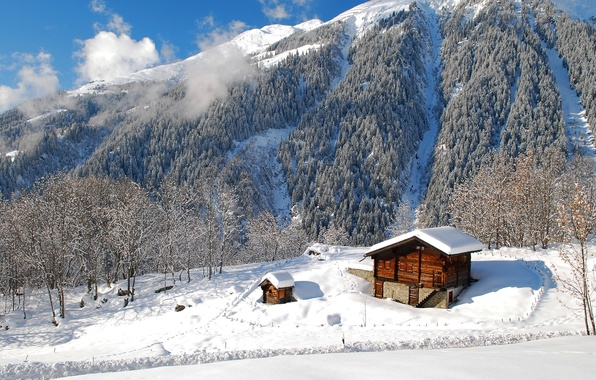 Picture winter, forest, the sky, clouds, snow, trees, landscape, mountains, nature, home
