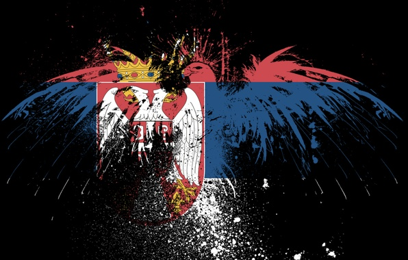 Picture eagle, flag, brothers, Serbia, Serbia, serbian flag, serbia, the Serbian flag
