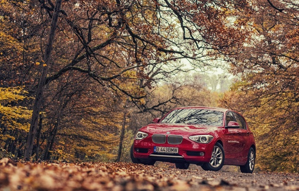 Picture autumn, BMW, BMW, red, F20, 118D
