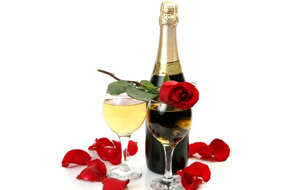 Picture wine, rose, bottle, petals, glasses, white background, champagne, red
