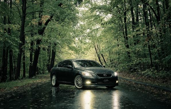Picture road, summer, rain, Lexus