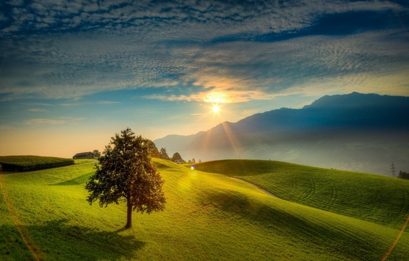 Picture road, the sky, the sun, clouds, tree, Mountains, valley