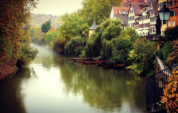 Picture autumn, trees, the city, fog, river, building, home, Germany, Germany, Tübingen, Tübingen