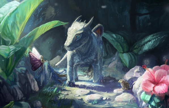 Picture forest, stones, bird, dragon, frog, fairy, fantasy, art, dragon, cub, path