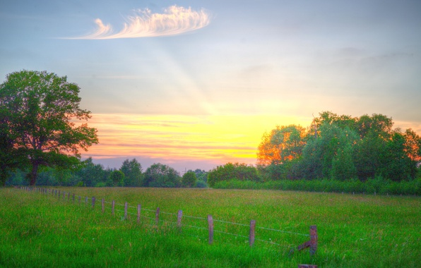 Picture field, the sky, grass, clouds, trees, sunset, the fence, the countryside, sunlight