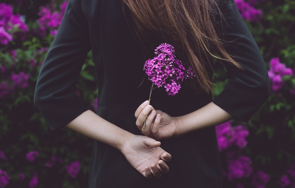 Picture girl, flowers, hands, lilac, Michael Dyer