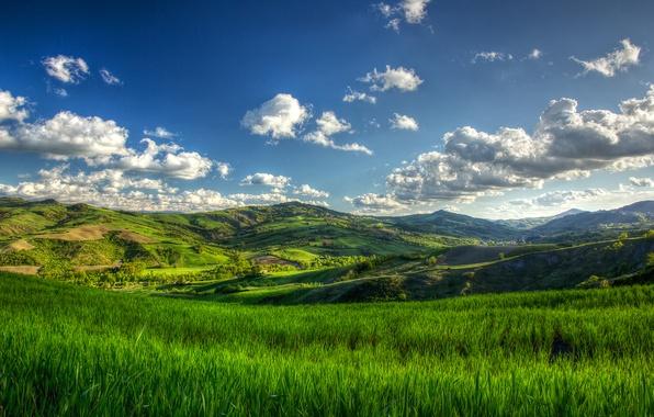 Picture summer, grass, cloud, tree, hills