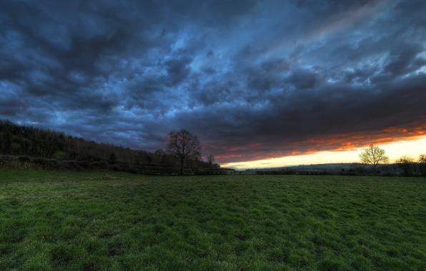 Picture field, the sky, landscape, sunset