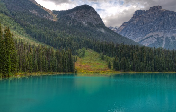Picture forest, trees, mountains, lake, tree, Canada, British Columbia, Yoho National Park, Emerald Lake