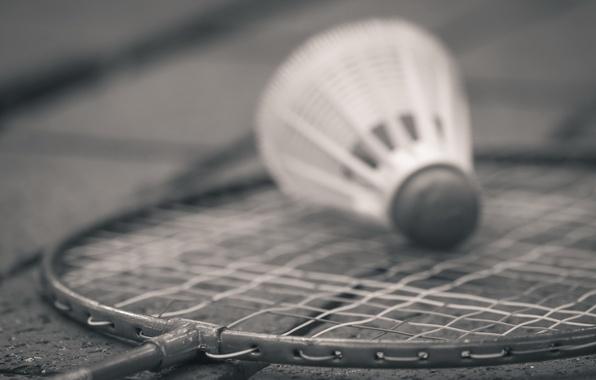 Picture Monochrome, sports, badminton