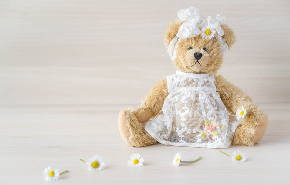 Picture toy, chamomile, dress, bear, girl, bow