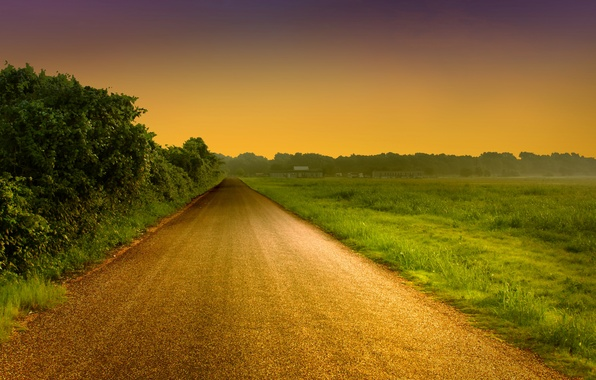 Picture road, greens, the sky, grass, leaves, trees, landscape, nature, background, tree, widescreen, Wallpaper, foliage, the …