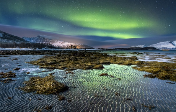 Picture winter, sand, the sky, water, stars, snow, algae, mountains, night, shore, island, Northern lights, ruffle, ...