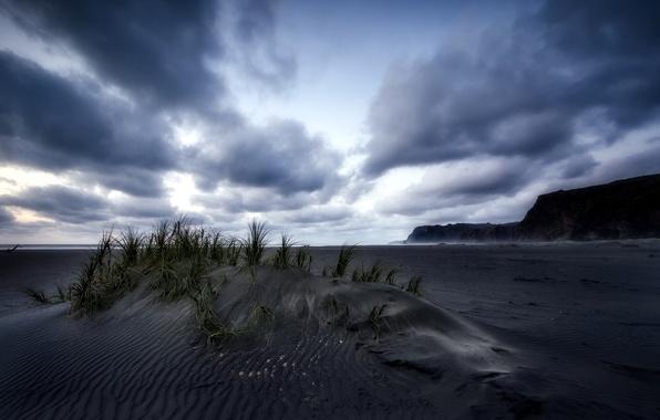 Picture New Zealand, Last Light, Karekare Beach, Black Sand