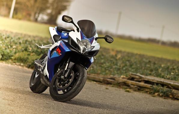 Picture blue, lawn, motorcycle, suzuki, bike, blue, Suzuki, supersport, gsx-r750