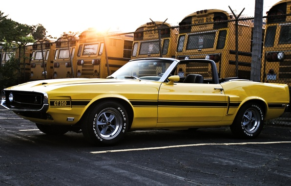 Picture the sky, the sun, yellow, the fence, Shelby, mustang, Mustang, 1969, convertible, ford, muscle car, …