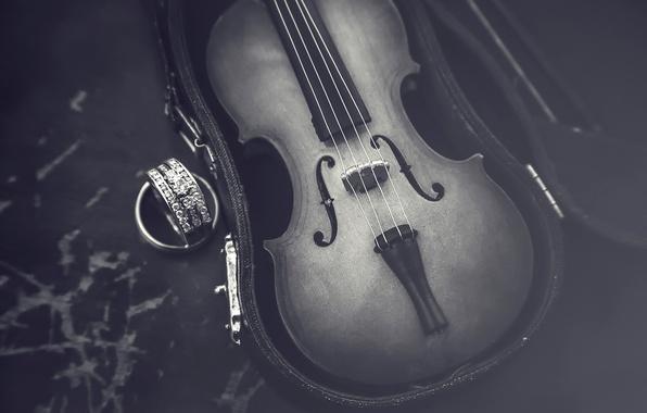 Picture macro, violin, case