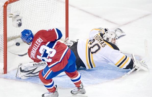 Picture hockey, goal, michael, NHL, bruins, cammalleri, hockey, boston, tim, montreal, tomas, nhl, canadians, goalkeeper