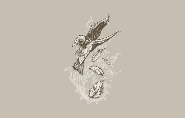 Picture flight, bird, pattern, skull, feathers