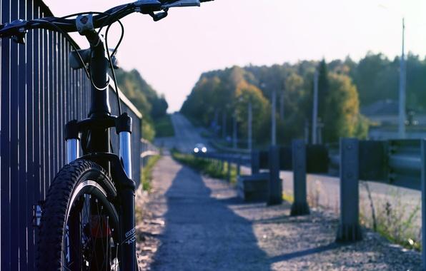 Picture asphalt, the sun, bike, background, earth, widescreen, Wallpaper, mood, wheel, the wheel, wallpaper, bicycle, widescreen, ...
