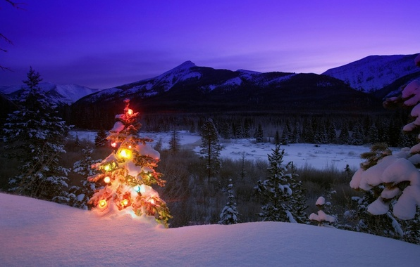 Picture winter, snow, trees, mountains, nature, toys, tree, the evening, New year, twilight