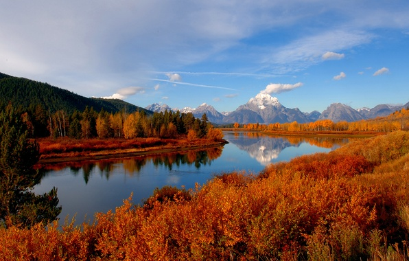 Picture autumn, forest, the sky, river, mountain