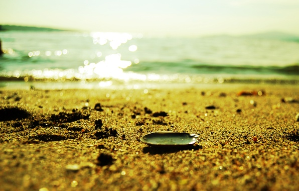 Picture sand, sea, beach, summer, water, macro, light, Shine, sink, shell, grit