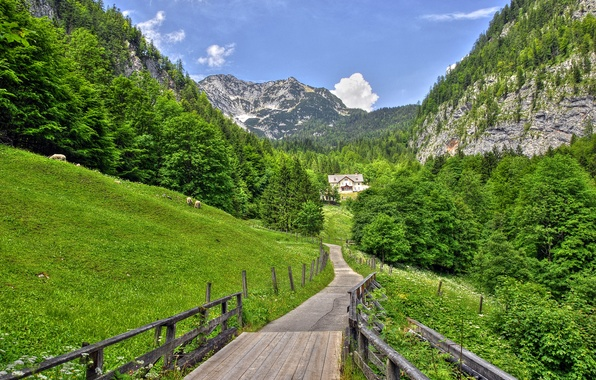 Picture road, the sky, grass, clouds, trees, mountains, house, slope, meadow, the bridge, Alps