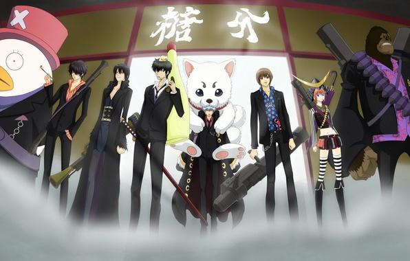 Picture Anime, one piece, gintama, gintoki, hijikata