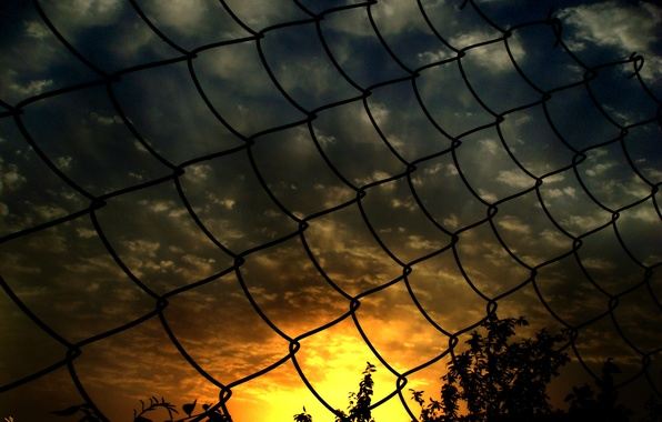 Picture sunset, mesh, the fence