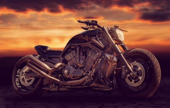Picture the sun, motorcycle, bike, Bike, Sandra Dombrovsky