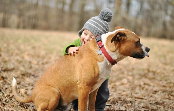 Picture joy, background, each, mood, widescreen, Wallpaper, dog, boy, wallpaper, hugs, child, widescreen, dog, background, boy, …