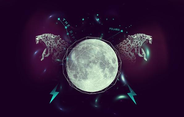 Picture purple, stars, line, the moon, lightning, leopard