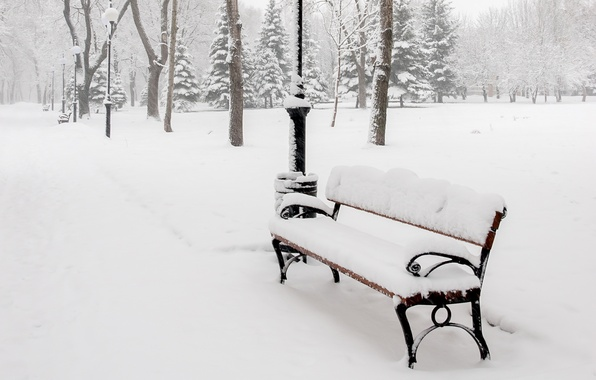 Picture winter, snow, trees, bench, nature, Park, shop, lights, shop, alley, bench