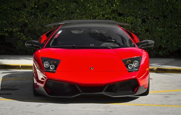 Picture red, lamborghini, supercar, murcielago, lp670 sv