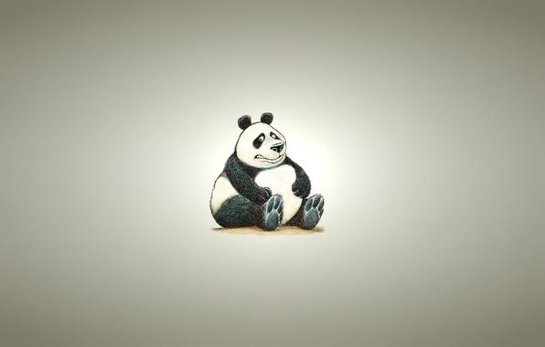 Picture background, minimalism, light, Panda, sitting, panda, chubby