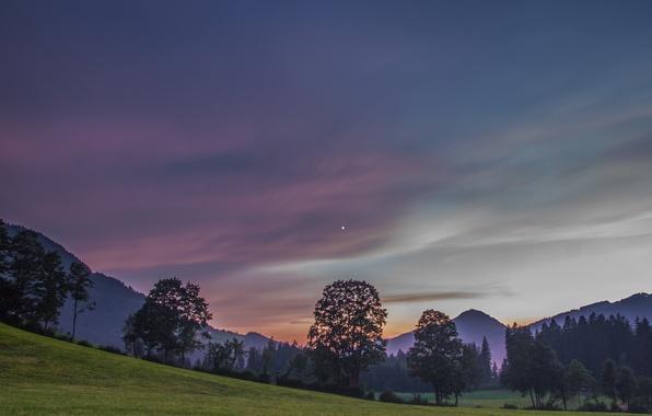 Picture the sky, trees, mountains, the evening, Austria, Alps, meadow, Austria, Alps, Tyrol, Tyrol, Kitzbühel, Kitzbuhel