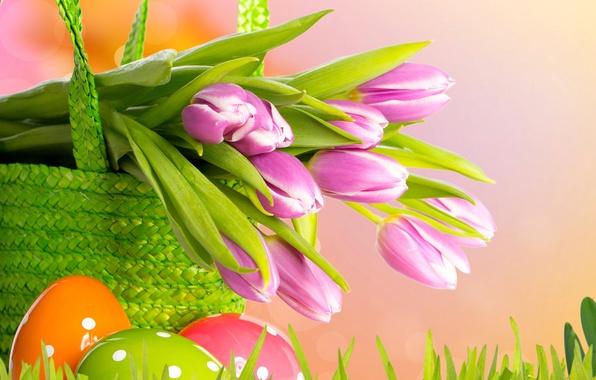 Picture grass, flowers, basket, eggs, spring, Easter, tulips, grass, flowers, tulips, spring, painted, eggs, easter, basket