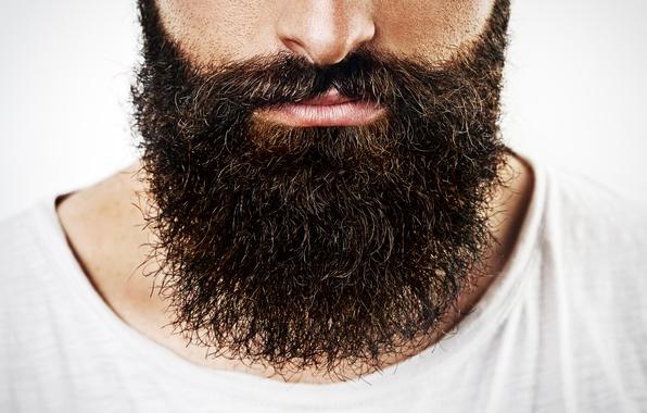 Picture man, lips, face, beard