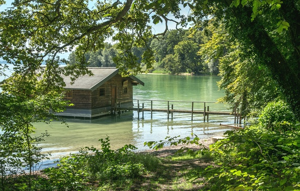 Picture forest, trees, river, shore, Germany, Bayern, house, the bushes, in the water, Feldafing
