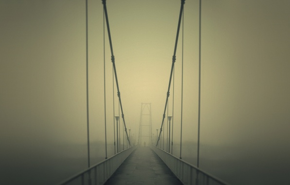Picture road, bridge, fog