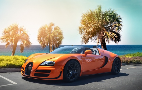 Picture beach, orange, palm trees, veyron, bugatti, hypercar