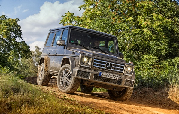 Picture Mercedes-Benz, Mercedes, AMG, AMG, W463, 2015, G 63